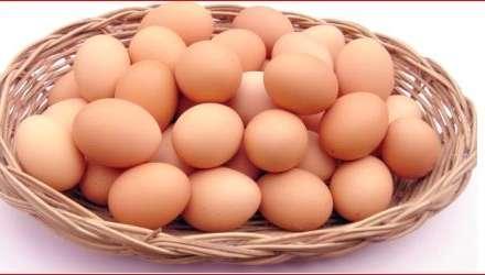 Yumurtanın qiyməti payız aylarında ucuzlaşa bilər