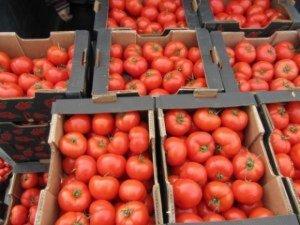 Bazarda pomidor bahalaşdı: satıcılar da gileylənir, alıcılar da…